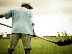 cargill-farmer-from-INCODER